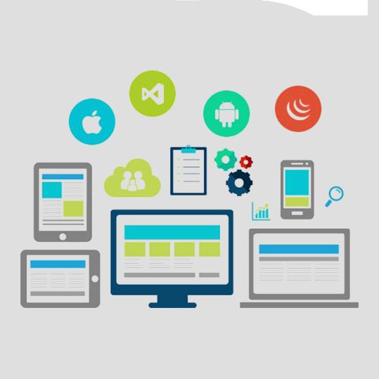 Cross platform/ Hybrid App Development