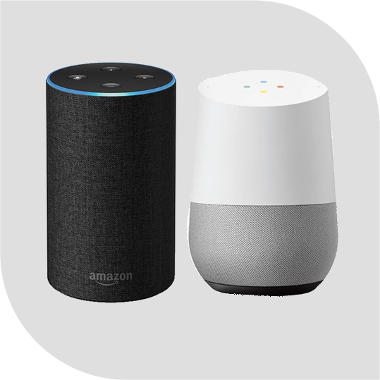 Voice Enabled Technology