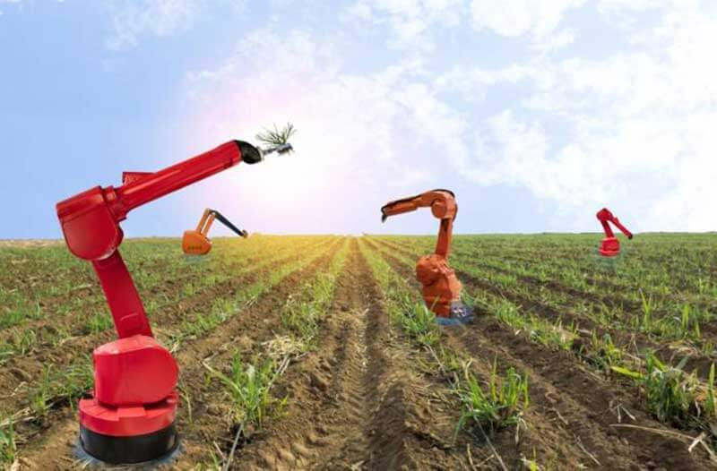 Automnomous-robotic-farming