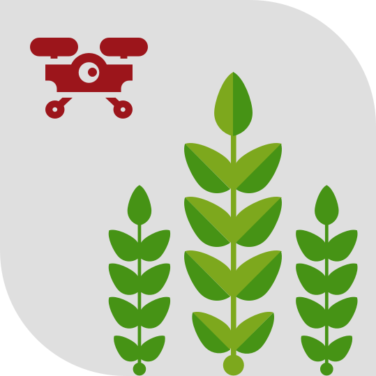 IoT enabled Drones and Sensors for Crop Monitoring